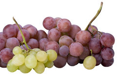 White and red grapes Stock Photos