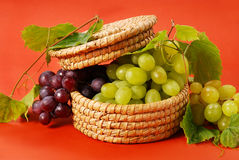 White and red grapes in basket Royalty Free Stock Image