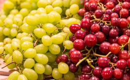 White and Red Grapes stock photography