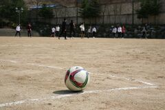 White Red and Green Ball Near Group of People Playing Soccer Royalty Free Stock Photos