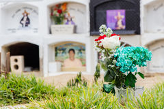 White,red and green roses in from of the graves. Some special roses with different colors show a special moment with the graves in this special cementery stock image