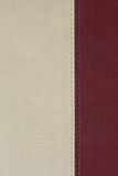 White and red leather texture. Background of book cover Stock Photography