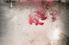 White and red pink ink in water. Sunshine lighting. Dynamic move. Ment of paint in the water. Side view Stock Images
