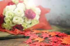 White and red rose in christmas and valentine and lighting effect stock photo