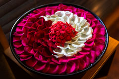White and red rose petals in the bowl in Balinese SPA salon Royalty Free Stock Images