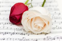 White and red roses. On musical notes page Royalty Free Stock Photography