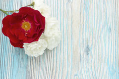 White and red roses on wooden table, rustic background. Selective focus, tender romantic background. Place for text, decoration wi Stock Image