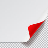 White and red sheet of paper with curved corner Stock Image