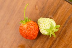 White and red strawberries lie in the sun. Delicious and sweet dessert berry. Vitamins. For your design stock photos