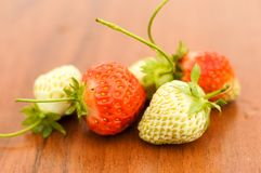 White and red strawberries lie in the sun. Delicious and sweet dessert berry. Vitamins. For your design stock image