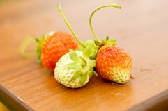 White and red strawberries lie in the sun. Delicious and sweet dessert berry. Vitamins. For your design royalty free stock image