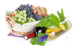White and red wine bottles and grapes Royalty Free Stock Photos