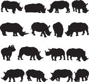 White rhinoceros silhouette contour Royalty Free Stock Photography
