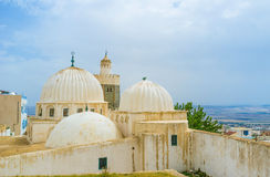 The white ribbed domes Royalty Free Stock Photography