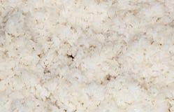 White Rice Stock Photography