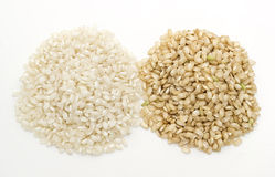 White rice and brown rice Royalty Free Stock Photo