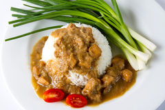Rice with chicken stew. White rice with chicken stew Royalty Free Stock Photography