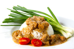 Rice with chicken stew. White rice with chicken stew Royalty Free Stock Images