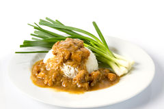 Rice with chicken stew. White rice with chicken stew Stock Image