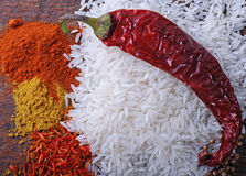 Rice,chilly and indian spices Stock Image