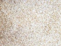 White rice grains. Full frame of white rice grains stock image