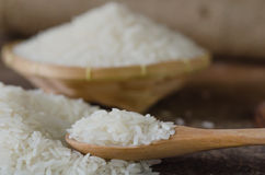 White rice  grains Royalty Free Stock Images