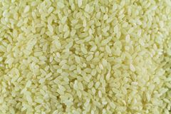 White rice is a handful for the whole photo. Wallpaper royalty free stock photos