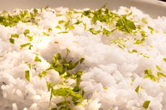 White rice with herbs Stock Image