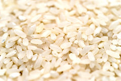 White Rice Macro Royalty Free Stock Photo