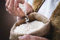 White rice in old hand. White rice, typical risotto rice, in the old hands in burlap sack Royalty Free Stock Image