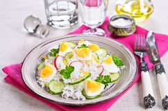 White rice with radish, cucumber and eggs Stock Photos
