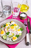 White rice with radish, cucumber and eggs Royalty Free Stock Photos