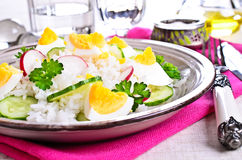 White rice with radish, cucumber and eggs Royalty Free Stock Images