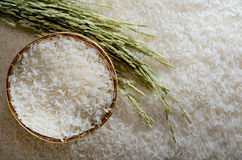 White rice and spike. White rice in basket and spike Royalty Free Stock Image