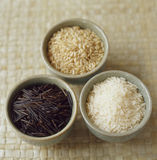 White rice and wild rice Stock Image