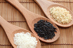 White rice and wild rice & brown rice in a wooden spoons. White rice and wild rice in a wooden spoons on bamboo napkin. Focus on a wild rice. Close-up Stock Photography