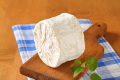 White rind cheese Stock Photography