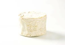 White rind cheese Royalty Free Stock Photo