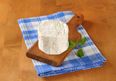 White rind cheese Stock Images