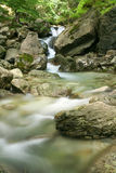White river Royalty Free Stock Photography