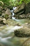White river. In Stara planina mountain in Bulgaria royalty free stock photography