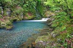 White river. In Stara planina mountain in Bulgaria Stock Image