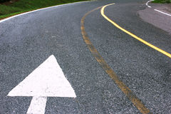 White road arrow direction sign on the asphalt road. Royalty Free Stock Photo