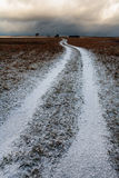 White road to the horizon under the snow in a field Royalty Free Stock Photo