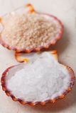 White rock sea salt in sea shell on paper Royalty Free Stock Photography