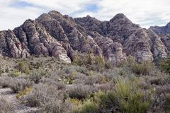 White Rock, Willow Springs, Red Rock Conservation Area, Nevada, USA. Along the hiking trails on the White Rock Loop in Willow Springs, Red Rock Conservation Area stock photos