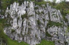 White Rocks Near Cracow Stock Photo