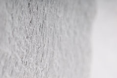 White rolled toilet paper Stock Image