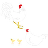 White rooster, hen and chicks Royalty Free Stock Photo