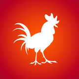White rooster on a red background. Royalty Free Stock Photography